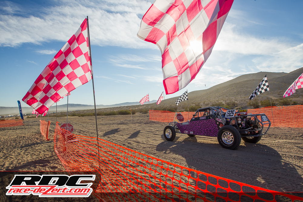 MORE-race-for-a-cure-2014-7743