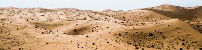 sonora-dunes